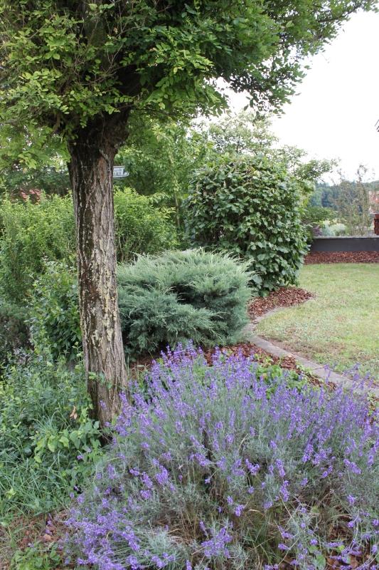 Michael veith garten und landschaftspflege for Garten und landschaftspflege
